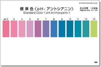 パックテスト標準色 50枚組 pH-アントシアニン